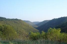 baybachtal